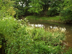 The River Onny (gurdonark) Tags: river onny craven arms england shropshire hills discovery centre