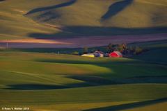 Farm from Steptoe Butte (walkerross42) Tags: barn farm hills palouse washington red steptoe butte