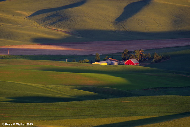 Farm from Steptoe Butte large image