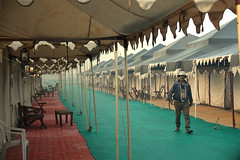 Tents for visitors during Kumbh Mela, Thriveni Sangam, Prayagraj (vijvijvij) Tags: thrivenisangam prayagraj alahabad kumbhmela