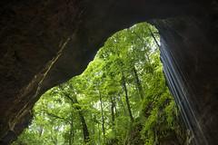 Enter the Purgatory (Explored) (Ramen Saha) Tags: nationalpark mammothcaves mammothcavenationalpark kentucky cave waterfall ramensaha manualhdr naturalentrance historicentrance greenrivervalley hillcountry