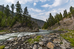River (ValeTer_) Tags: body water wilderness nature river mountain tree watercourse stream natural environment nikon d7500 national park usa wy wyoming yellowstone nps landscape nationalpark yellowstonenationalpark