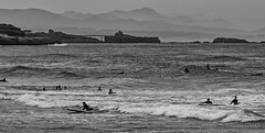 Surfing along Anglet (tjmic_92) Tags: noirblanc france surf anglet blackwhite paysbasque