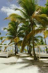 Premium Cabanas (Taomeister) Tags: nikoncoolpixa bavaropuntacana dominicanrepublic