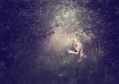 Forest dreams. (Robert Björkén (Hobbyfotograf)) Tags: