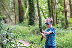 Wood walk at Tintern Abbey (cottert) Tags: tinternabbey liam