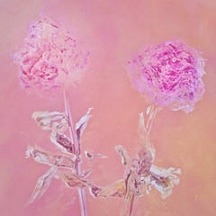 190/365 (Jane Simmonds) Tags: flower faded iphone multipleexposure peonies 3652019