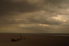 Still beach (Mi-Fo-to) Tags: long exposure photography porto caleri beach spiaggia magic light sea still mare calmo veneto italia sabbia sand sony a7rii sigma 30 28 full frame tronco legno wood trunck trunk