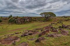 Leopard Gorge (Xenedis) Tags: africa afrika clouds eastafrica gamedrive gorge grass kenya landscape leopardgorge maasaimara maranorthconservancy narokcounty republicofkenya riftvalley rocks safari savannah sky tree