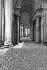 Säulen (Frank Guschmann) Tags: potsdam säule frankguschmann nikond500 d500 nikon bw sw schwarzweiss blackwhite