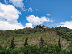 Looming (Wicked Dark Photography) Tags: dourovalley europe landscape portugal clouds grapevines river rivervalley sky terracefarming terraces travel vacation vineyard winery