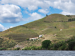 Douro hills (Wicked Dark Photography) Tags: dourovalley europe landscape portugal clouds river rivervalley sky terracefarming terraces travel vacation