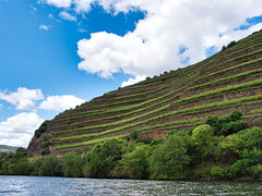 Effortful (Wicked Dark Photography) Tags: dourovalley europe landscape portugal agriculture sky terraces travel vacation vineyard
