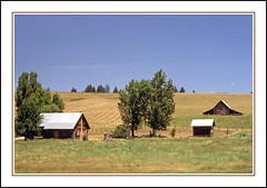 Old Time Farm Life in Garden Valley, Idaho (sjb4photos) Tags: idaho gardenvalleyidaho epsonv500 farm barns