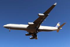 Airbus A340-313 Lufthansa D-AIGT (Niko Hpx) Tags: airbus a340313 airbusa340313 a340 340300 a343 lufthansa daigt msn304 340313x fwwyj cfmicfm565c4 cfmi cfm565c4 cfminternational viersen lh dlh gec lh9916 dlh9916