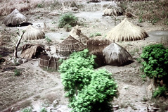 79-065 (ndpa / s. lundeen, archivist) Tags: nick dewolf color photograph photographbynickdewolf 1976 1970s film 35mm 79 reel79 africa northernafrica northeastafrica african ethiopia ethiopian southernethiopia aerial fromtheairplanewindow landscape terrain trees buildings huts thatchroof thatchedroof fence sticks branches wood building hut