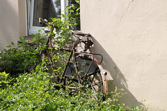 (dorothea knie) Tags: ditzum fahrrad bicycle rost rust alt old