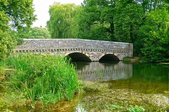 River Avon, Ringwood (Ugborough Exile) Tags: ringwood hampshire hants england uk sony rx100vi 2019 trees treesdiestandingup bridge