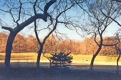 USA-La Louisiane, le Parc de Tabasco à la tombé du soleil (Roger-11-Narbonne) Tags: oiseaux usa mississippi fleuve eau maison paysage sauce tabasco lac sel étang louisiane soleil arbre chêne