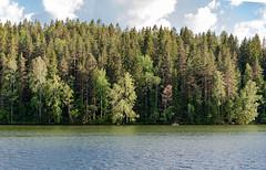Midsummer Day in Finland (Ninara) Tags: lahti päijänne finland juhannus midsummer june summer cruise lake water evening night summernight ship boat