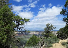 Along the Harpers Corner Road (Patricia Henschen) Tags: dinosaur colorado mountain mountains clouds landscape path overlook trail pathscaminhos nationalmonument harperscornerroad canyonvisitorscenter
