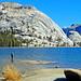 Walking on Water, Tenaya Lake, Yosemite 2018