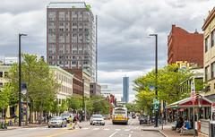 Massachusetts Avenue (Eridony (Instagram: eridony_prime)) Tags: cambridge middlesexcounty massachusetts metroboston centralsquare
