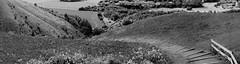 le lacet-3 (xtrice) Tags: panoramique haillicourt terrils pasdecalais hautsdefrance france noiretblanc chemin ubuntu rawtherapee gimp hugin