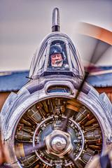 On the Flight Line.jpg (fotobyfred) Tags: t6 airshows warhawkairmuseum nampaidaho readyfortakeoff nikkor200400mm nikon d3