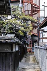 sPiral House (m-louis) Tags: 32mm j5 nikon1 house japan kaizuka osaka pine rust spiral stairs 大阪 家 日本 松 螺旋階段 貝塚 錆