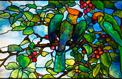 Parrot Transom (Whidbey LVR) Tags: lyle rains lylerains olympus em5ii florida orlando winter park charles morse museum tiffany leaded stained glass window