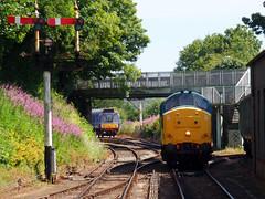 37142 Bodmin General (1) (Marky7890) Tags: 37142 class37 bodmingeneral bodminwenfordrailway cornwall heritage diesellocomotive
