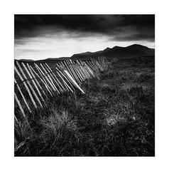 Landscape in the highlands (Gerhard Busch) Tags: highland landschaft zaun schottland unterwegs