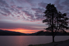 Sunrise Foster Lake, Oregon (Bonnie Moreland (free images)) Tags: lake water mountains trees sunrise oregon sweethome fosterlake reservoir silhouettes