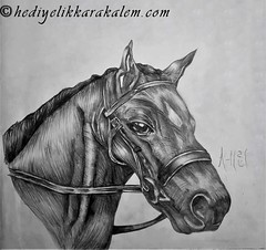 BLACK HORSE Drawing | Sketching | Karakalem (hediyelikkarakalem) Tags: charcoal charcoaldrawing drawings draw image pictures illustration graphics paintings sketching pencildrawing art myart graphic creative portrait abstractart life love realism cool awesome beautiful sketchbook artist lifestyle europe usa design birthday