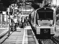 175107 @ Chester (A J transport) Tags: class175 dmu coradia 1000 transportforwales diesel 175107 chester dlsr nikkon d5300 railway england trains black white platform people