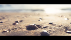 [Shelldon] (Visual Flows) Tags: visual flows visualflows photography sigma sigmabenelux art sony alpha sonyalpha a7ii amsterdam nederland bloemendaal aan zee beach summer sun shell closeup wideangle cinematic cinematography widescreen 169 lightroom photoshop exploring wandering worldismyplayground nature netherlands landscape