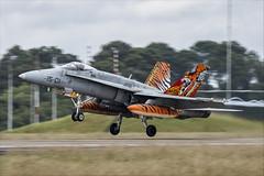 McDonnell Douglas EF-18M Hornet - 49 (NickJ 1972) Tags: montdemarsan ba118 nato tiger meet spotters day ntm 2019 aviation mcdonnelldouglas fa18 ef18 hornet c1514 1501