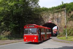 Warrington 192 Lumb Brook 29th June 2019 (John Eyres) Tags: warringtoncorporation192leylandpanthercubeastlancsbodyregked546ffollowedbyfodenpvd6regoed217passingunderthebridgewatercanalatlumbbrook grappenhall290619idon'tnormallyuploadbusesbutthoughtthiswasworthyofrecording