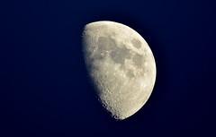 (bluebird87) Tags: moon mirror telescope meade lx70