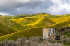 Carrizo Plains area (explored) (Brenda Harker) Tags: carrizo