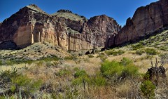 The Best Remedy for Those Who are Afraid, Lonely or Unhappy Is To Go Outside... (Big Bend National Park)