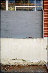 Symbols (NoJuan) Tags: wallart graffiti film filmshooter filmcamera 35mm 35mmfilm 35mmslr canon canonefm canonfilmcamera shootingfilm magnusonpark seattlewa washingtonstate pacificnorthwest
