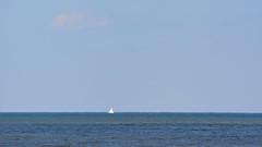 DSC_0583 (maddiebird101) Tags: beach corsonsinlet statepark nj newjersey shore jerseyshore wildlife nature naturephotography bird birds plane shell