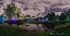 nocturna jardin botánico Bogotá - botanic garden Night (Luis FrancoR) Tags: night nocturnajardinbotánicobogotábotanicgardennight jardinbotanicobogota luisfrancor nikonbest nikon nikonistas nikonflickraward nikond600 nikon1424mm28 ngw ngs ngd ngg ngm ng ngc ngo bogotá colombia colors nightcolors