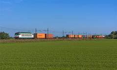 FS E652 140 (maurizio messa) Tags: mir e652 tigre intermodale pavese lombardia mau bahn ferrovia freighttrain fret cargo guterzuge treni trains railway railroad nikond7100