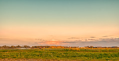 Pastoral landscape of Holland. (Alex-de-Haas) Tags: 1635mm d500 dutch europa europe holland nederland nederlands netherlands nikkor nikkor1635mm nikon nikond500 noordholland agriculture akkerbouw beautiful beauty bloemen bloemenvelden boerenland bollenvelden bulbfields farmland farming flowerfields flowers landbouw landscape landscapephotography landschaft landschap landschapsfotografie lente lucht mooi polder pracht schoonheid skies sky spring sundown sunset zonsondergang sintmaartensvlotbrug northholland