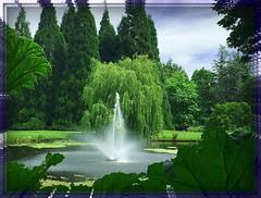 On a Summer Afternoon (Explored) (FernShade) Tags: vancouverbc vandusenbotanicalgarden gardenpond fountain trees park garden pond nature outdoor