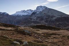 Alba alpina (cesco.pb) Tags: simplonpass passodelsempione alps alpi switzerland svizzera alba dawn canon canoneos60d tamronsp1750mmf28xrdiiivcld montagna mountains