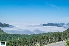 Mer de nuages (https://pays-basque.coline-buch.fr/) Tags: 2019 64 aquitaine barétous béarn colinebuch france lapierresaintmartin sudouest merdenuages montagne nature nuages paysage pyrénées pyrénéesatlantiques vallée